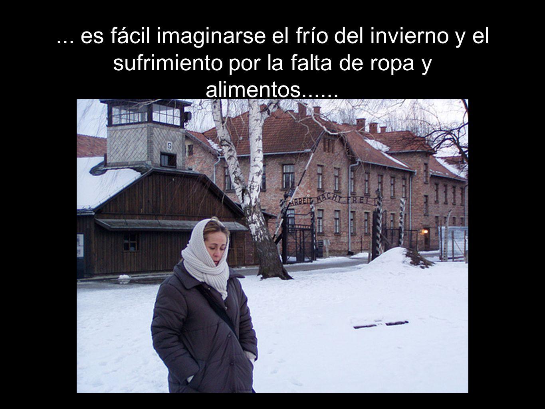 ... es fácil imaginarse el frío del invierno y el sufrimiento por la falta de ropa y alimentos......