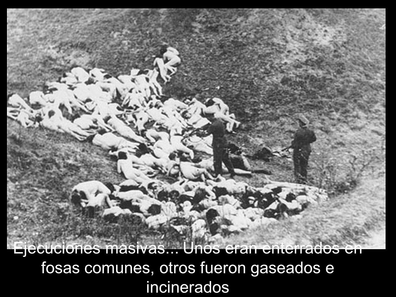 Ejecuciones masivas... Unos eran enterrados en fosas comunes, otros fueron gaseados e incinerados