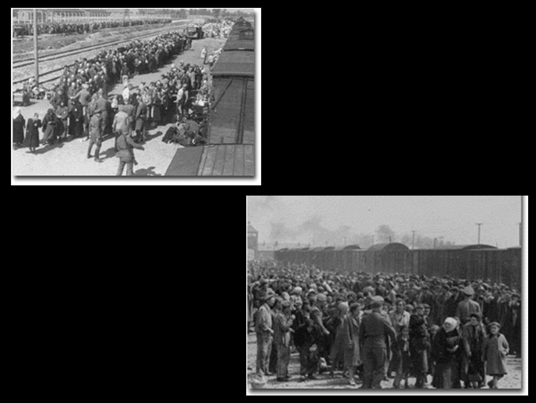 El papa Juan Pablo II visita Auschwitz
