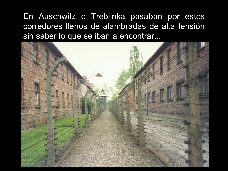 En Auschwitz o Treblinka pasaban por estos corredores llenos de alambradas de alta tensión sin saber lo que se iban a encontrar...