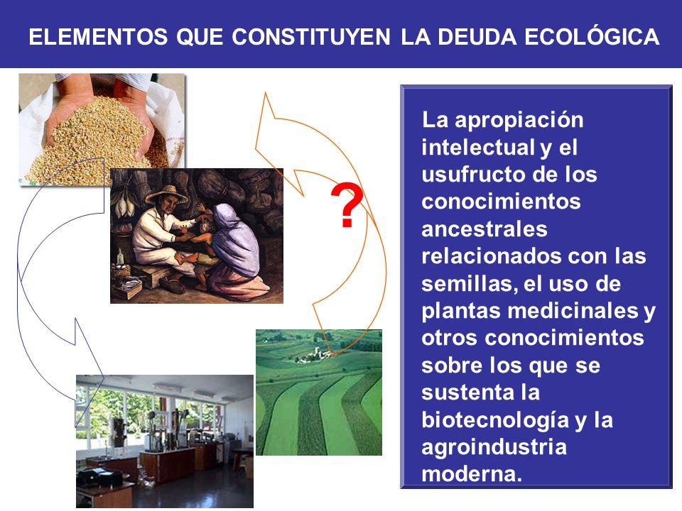 La apropiación intelectual y el usufructo de los conocimientos ancestrales relacionados con las semillas, el uso de plantas medicinales y otros conoci