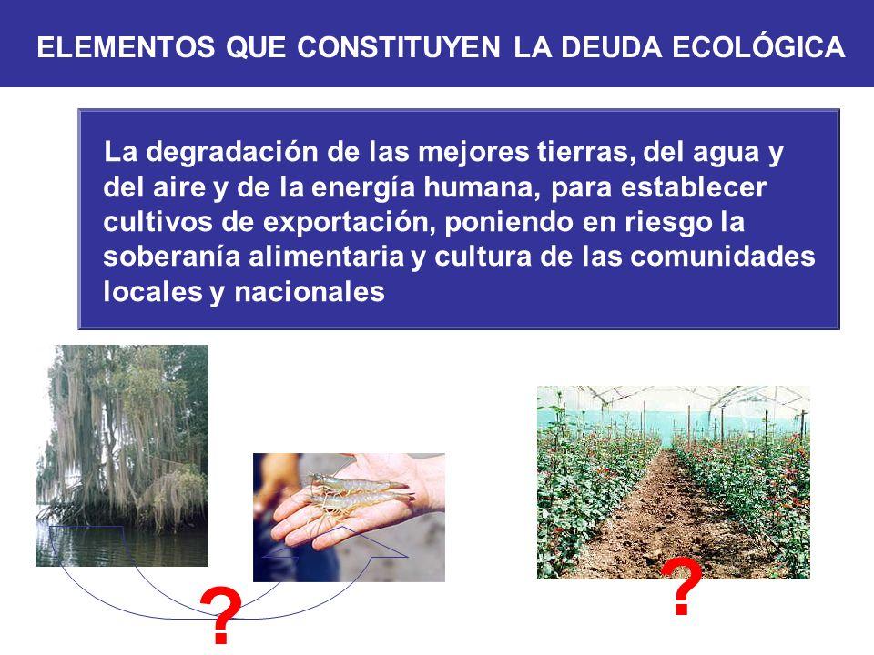 La degradación de las mejores tierras, del agua y del aire y de la energía humana, para establecer cultivos de exportación, poniendo en riesgo la sobe