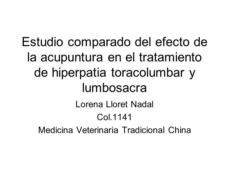Estudio comparado del efecto de la acupuntura en el tratamiento de hiperpatia toracolumbar y lumbosacra Lorena Lloret Nadal Col.1141 Medicina Veterina