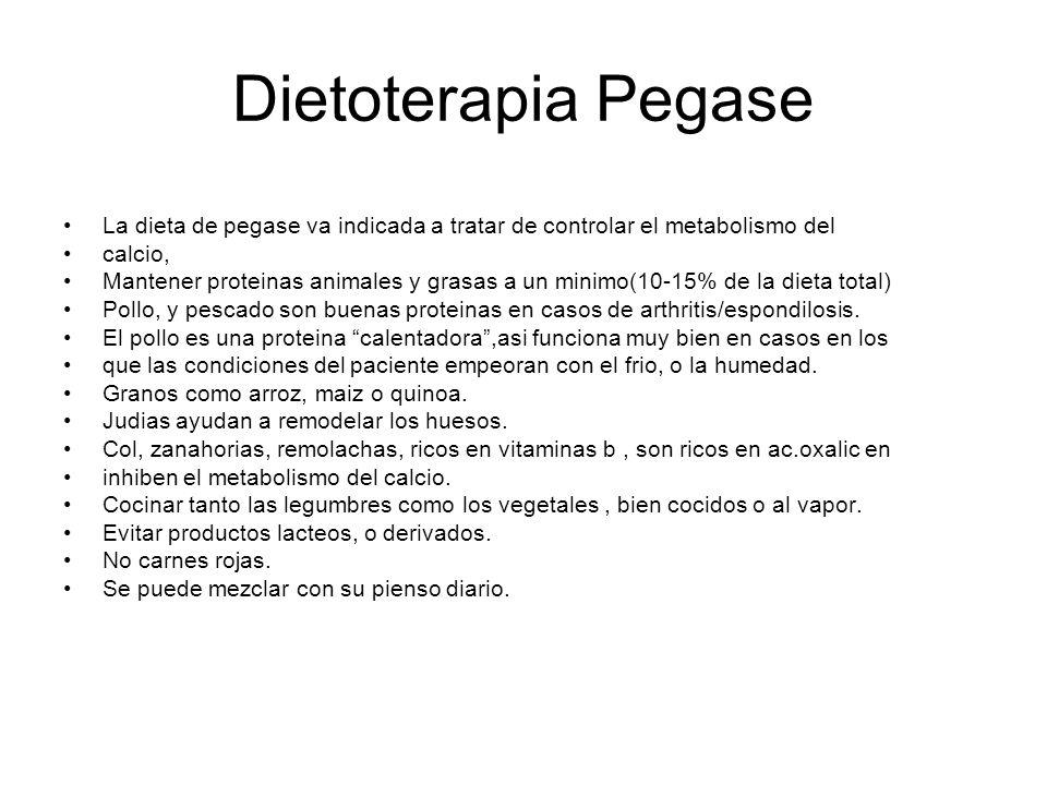 Dietoterapia Pegase La dieta de pegase va indicada a tratar de controlar el metabolismo del calcio, Mantener proteinas animales y grasas a un minimo(1