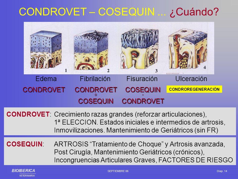 Edema Fibrilación Fisuración Ulceración CONDROVETCONDROVETCOSEQUIN--- O+ COSEQUINCONDROVET CONDROVET:Crecimiento razas grandes (reforzar articulacione