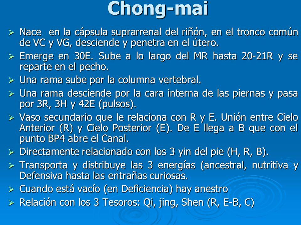 Chong-mai Nace en la cápsula suprarrenal del riñón, en el tronco común de VC y VG, desciende y penetra en el útero. Nace en la cápsula suprarrenal del