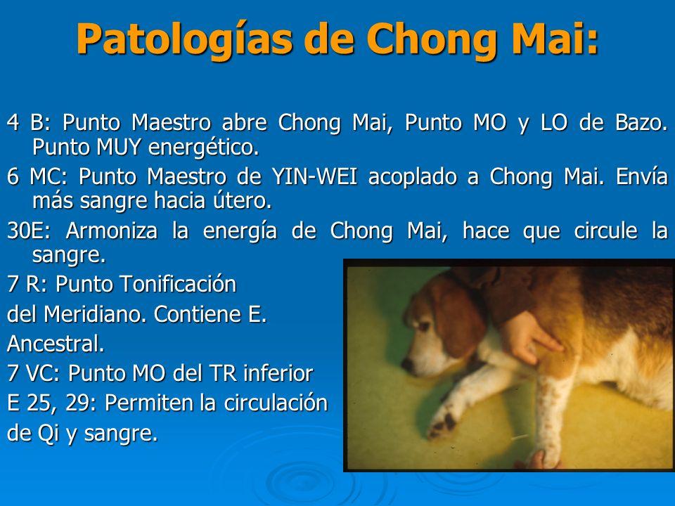 Patologías de Chong Mai: 4 B: Punto Maestro abre Chong Mai, Punto MO y LO de Bazo. Punto MUY energético. 6 MC: Punto Maestro de YIN-WEI acoplado a Cho