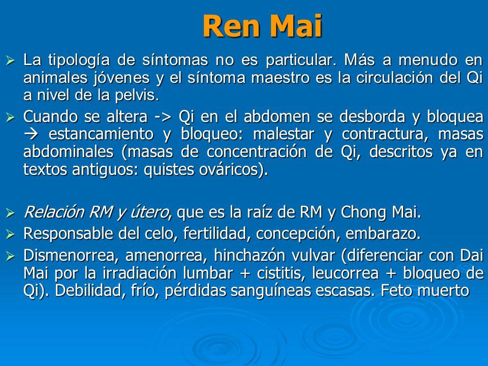 Ren Mai La tipología de síntomas no es particular. Más a menudo en animales jóvenes y el síntoma maestro es la circulación del Qi a nivel de la pelvis