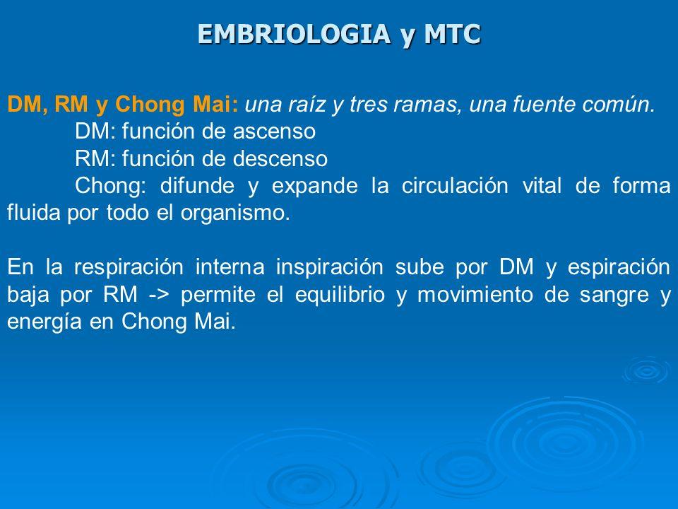 EMBRIOLOGIA y MTC DM, RM y Chong Mai: una raíz y tres ramas, una fuente común. DM: función de ascenso RM: función de descenso Chong: difunde y expande