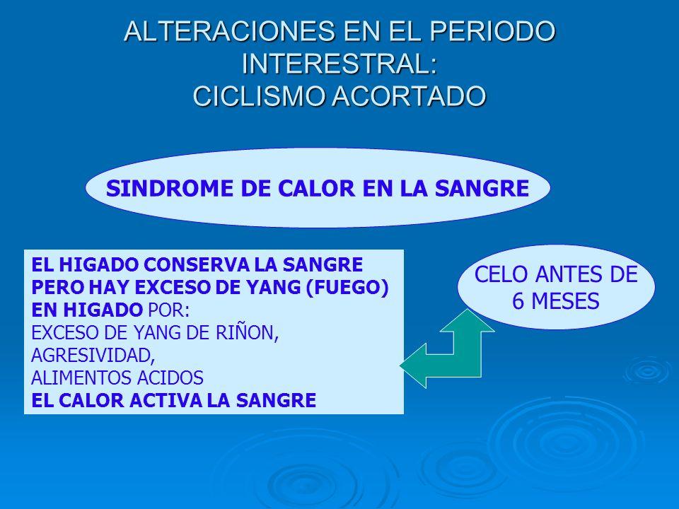 ALTERACIONES EN EL PERIODO INTERESTRAL: CICLISMO ACORTADO SINDROME DE CALOR EN LA SANGRE EL HIGADO CONSERVA LA SANGRE PERO HAY EXCESO DE YANG (FUEGO)
