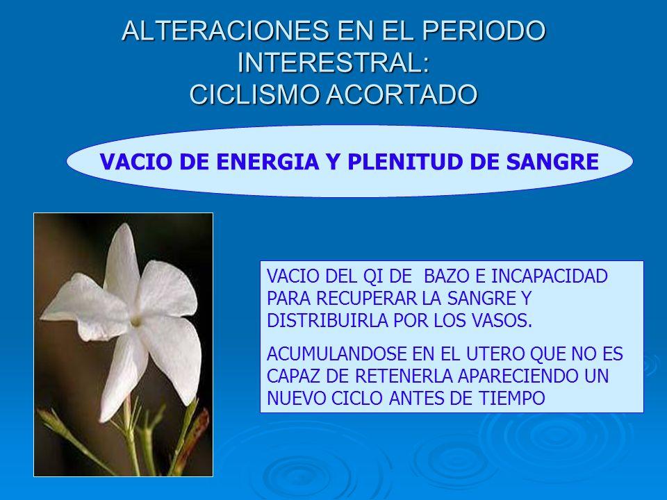 ALTERACIONES EN EL PERIODO INTERESTRAL: CICLISMO ACORTADO VACIO DE ENERGIA Y PLENITUD DE SANGRE VACIO DEL QI DE BAZO E INCAPACIDAD PARA RECUPERAR LA S