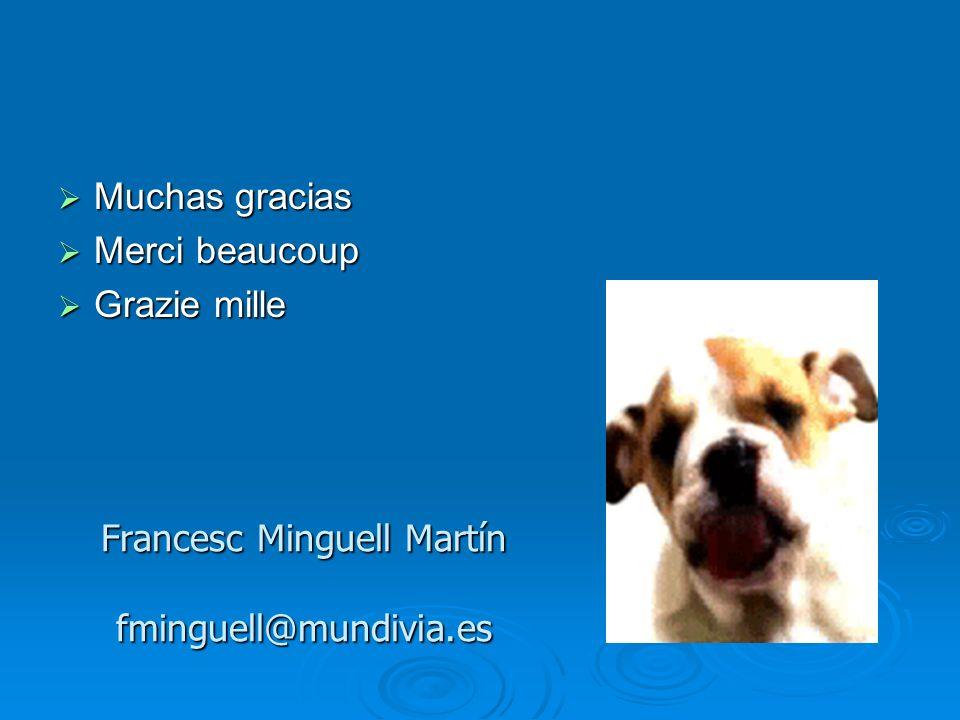 Francesc Minguell Martín fminguell@mundivia.es Muchas gracias Muchas gracias Merci beaucoup Merci beaucoup Grazie mille Grazie mille