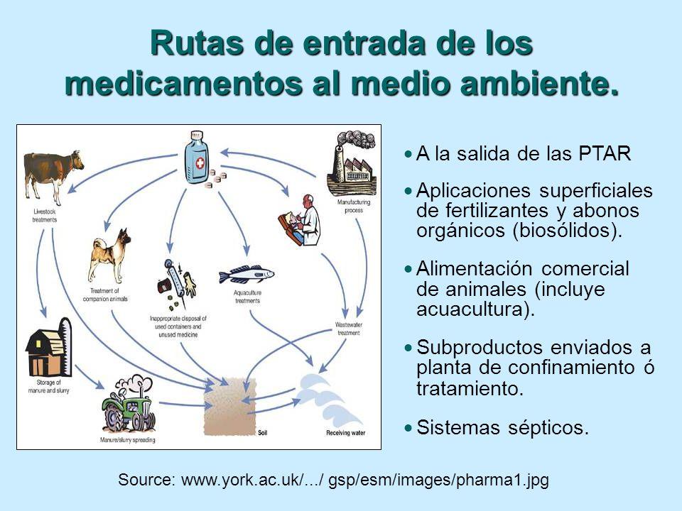 Source: www.york.ac.uk/.../ gsp/esm/images/pharma1.jpg Rutas de entrada de los medicamentos al medio ambiente. A la salida de las PTAR Aplicaciones su