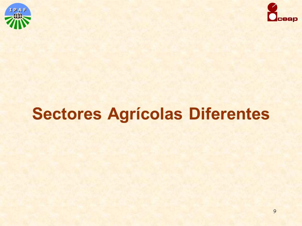 9 Sectores Agrícolas Diferentes