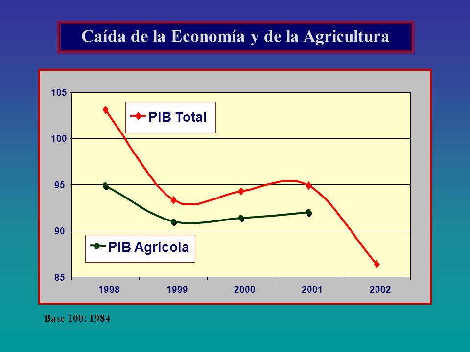 Caída de la Economía y de la Agricultura Base 100: 1984 85 90 95 100 105 19981999200020012002 PIB Total PIB Agrícola