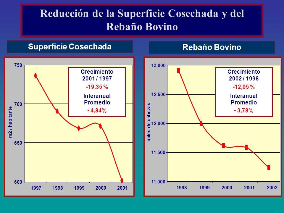 Superficie Cosechada Rebaño Bovino Reducción de la Superficie Cosechada y del Rebaño Bovino 19981999200020012002 19971998199920002001 11.000 11.500 12