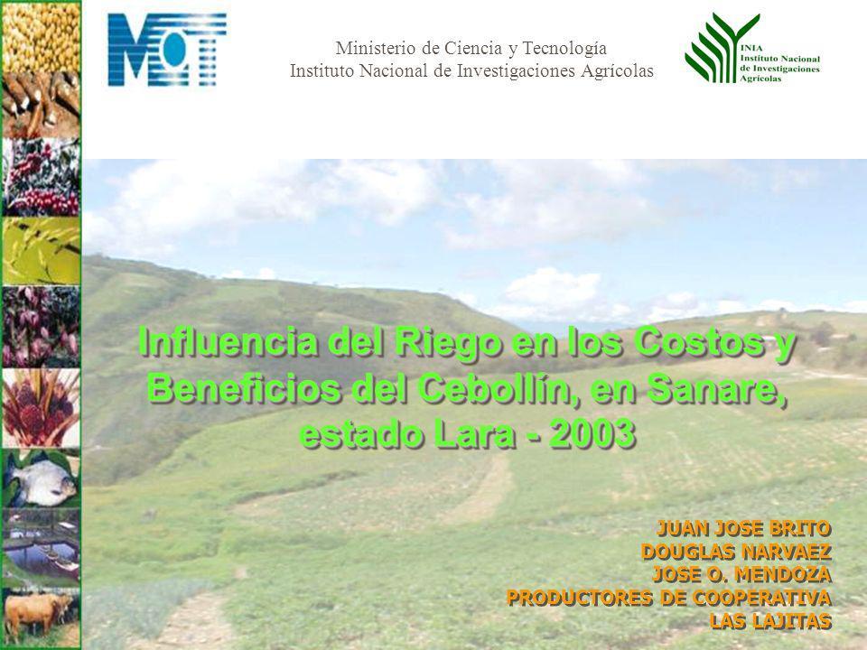 Ministerio de Ciencia y Tecnología Instituto Nacional de Investigaciones Agrícolas Influencia del Riego en los Costos y Beneficios del Cebollín, en Sa