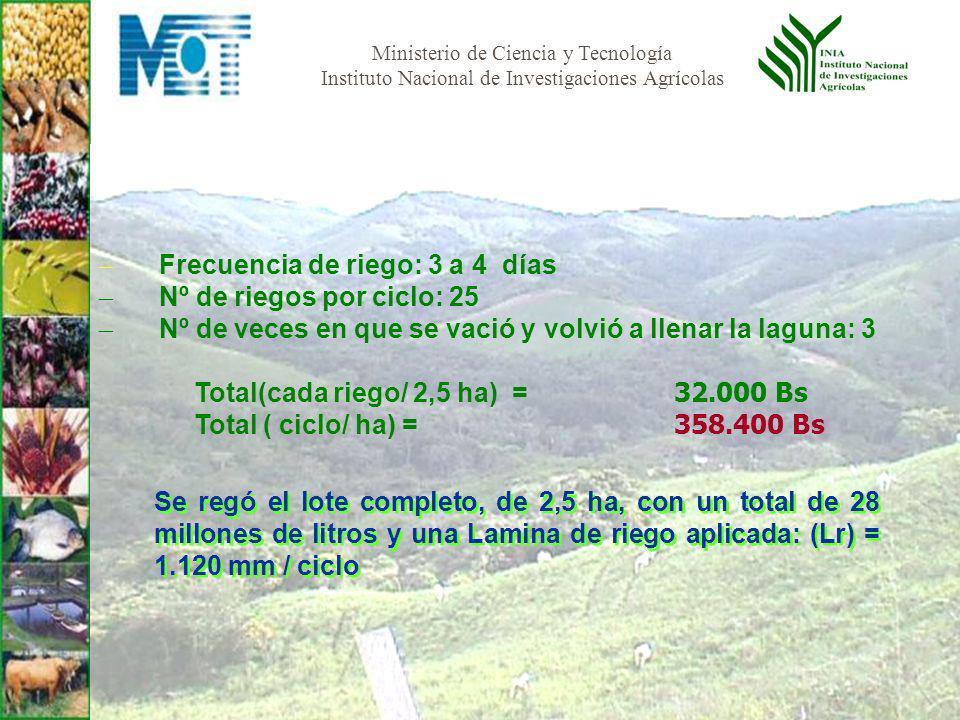 Ministerio de Ciencia y Tecnología Instituto Nacional de Investigaciones Agrícolas Frecuencia de riego: 3 a 4 días Nº de riegos por ciclo: 25 Nº de veces en que se vació y volvió a llenar la laguna: 3 Total(cada riego/ 2,5 ha) = 32.000 Bs Total ( ciclo/ ha) = 358.400 Bs Se regó el lote completo, de 2,5 ha, con un total de 28 millones de litros y una Lamina de riego aplicada: (Lr) = 1.120 mm / ciclo