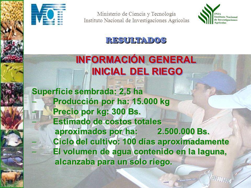 Ministerio de Ciencia y Tecnología Instituto Nacional de Investigaciones Agrícolas Superficie sembrada: 2,5 ha Producción por ha: 15.000 kg Precio por kg: 300 Bs.
