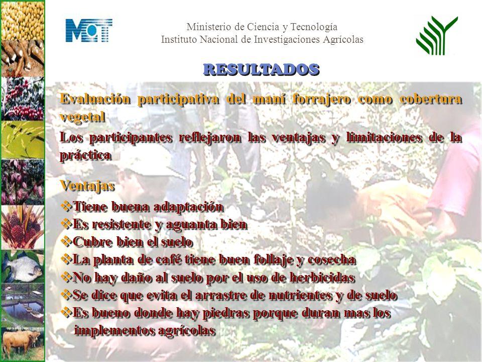 Ministerio de Ciencia y Tecnología Instituto Nacional de Investigaciones Agrícolas Evaluación participativa del maní forrajero como cobertura vegetal