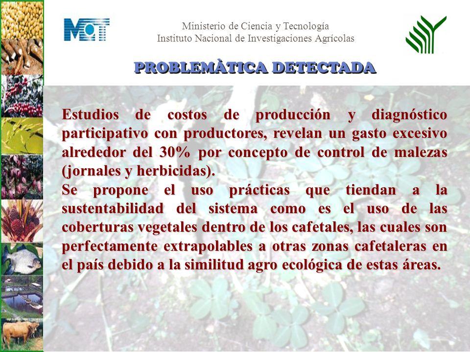Ministerio de Ciencia y Tecnología Instituto Nacional de Investigaciones Agrícolas Validar el uso del Maní forrajero como cobertura viva dentro de los cafetales.