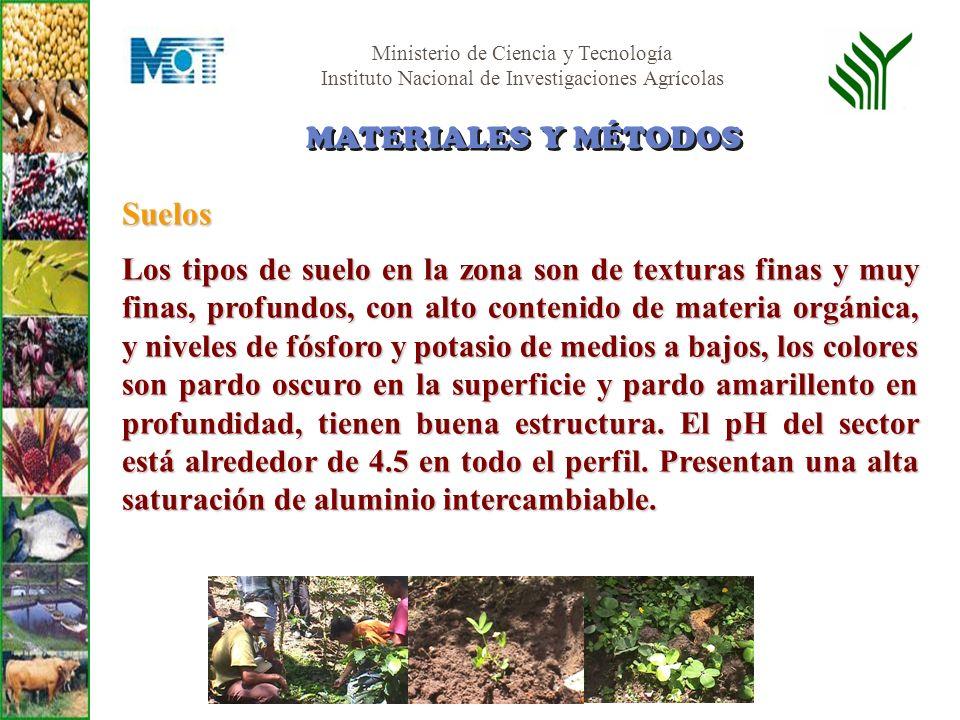 Ministerio de Ciencia y Tecnología Instituto Nacional de Investigaciones Agrícolas Suelos Los tipos de suelo en la zona son de texturas finas y muy fi
