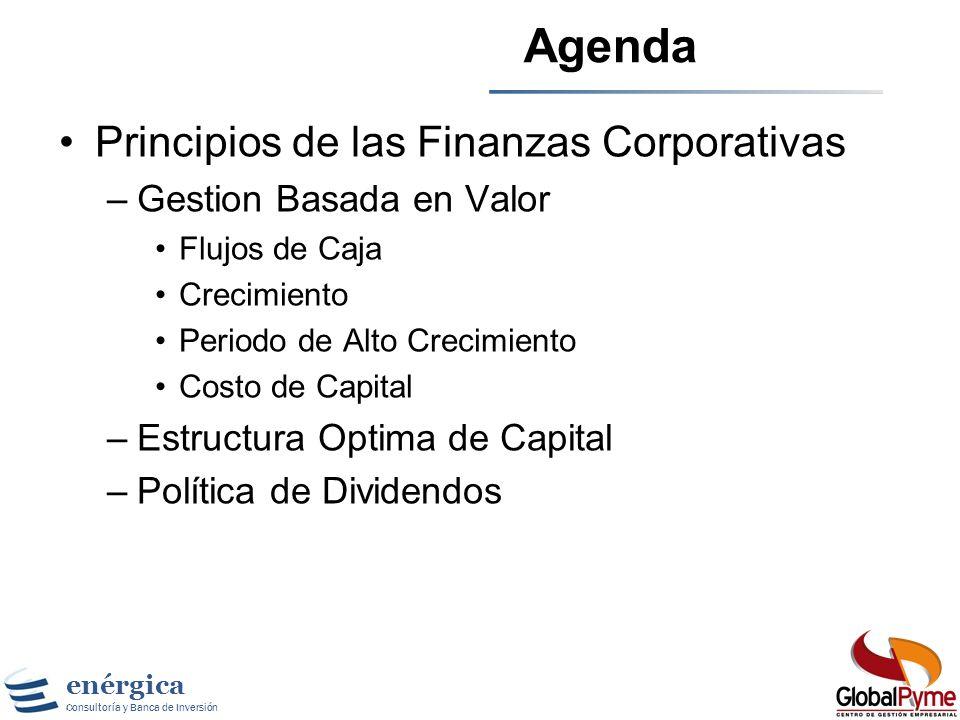 enérgica Consultoría y Banca de Inversión Agenda Principios de las Finanzas Corporativas –Gestion Basada en Valor Flujos de Caja Crecimiento Periodo de Alto Crecimiento Costo de Capital –Estructura Optima de Capital –Política de Dividendos