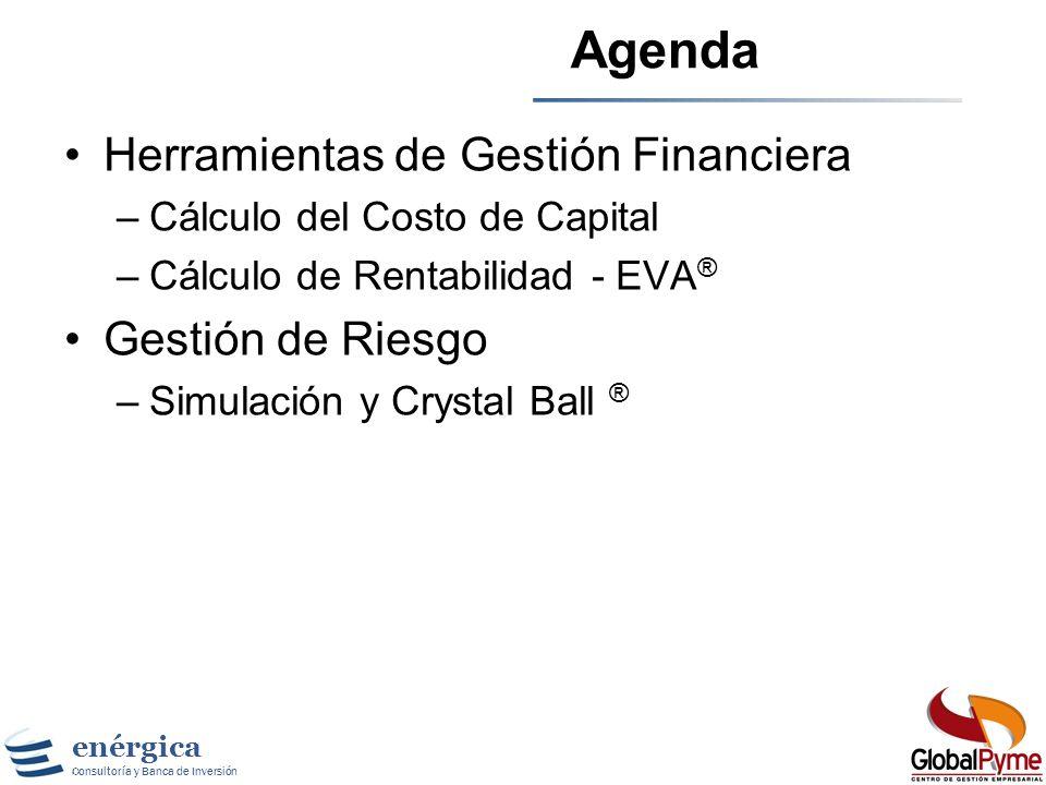 enérgica Consultoría y Banca de Inversión Agenda Herramientas de Gestión Financiera –Cálculo del Costo de Capital –Cálculo de Rentabilidad - EVA ® Gestión de Riesgo –Simulación y Crystal Ball ®
