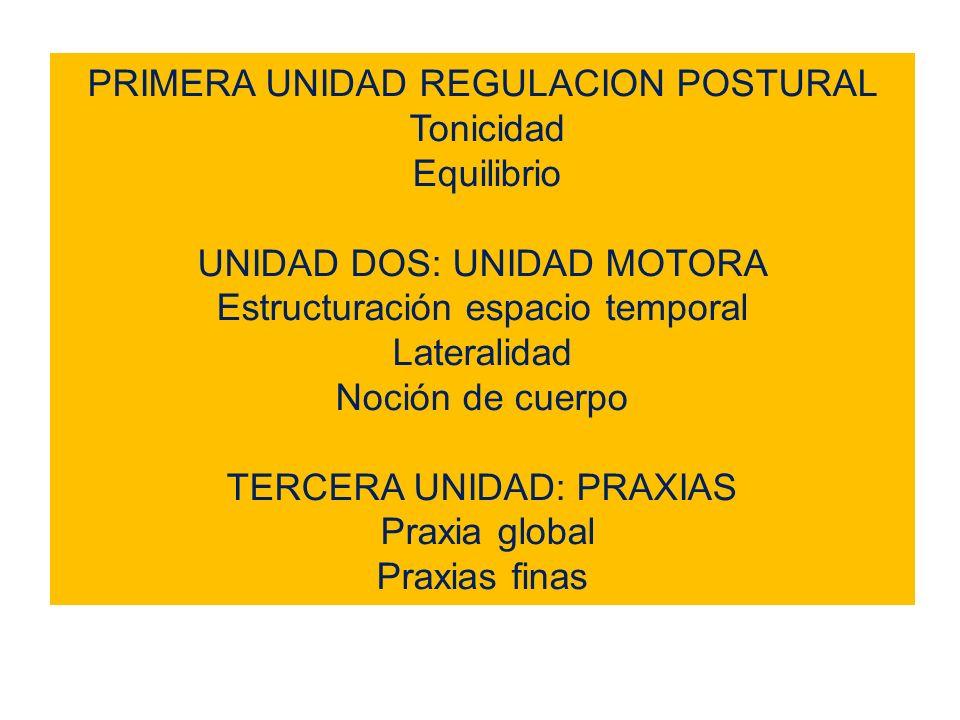 PRIMERA UNIDAD REGULACION POSTURAL Tonicidad Equilibrio UNIDAD DOS: UNIDAD MOTORA Estructuración espacio temporal Lateralidad Noción de cuerpo TERCERA