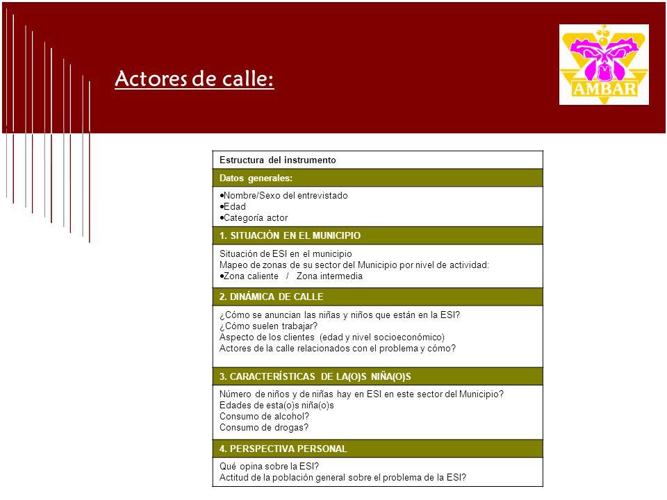 Actores de calle: Estructura del instrumento Datos generales: Nombre/Sexo del entrevistado Edad Categoría actor 1. SITUACIÓN EN EL MUNICIPIO Situación