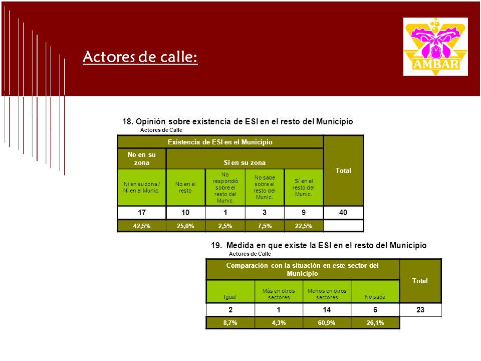 18. Opinión sobre existencia de ESI en el resto del Municipio Actores de Calle Existencia de ESI en el Municipio Total No en su zonaSí en su zona Ni e
