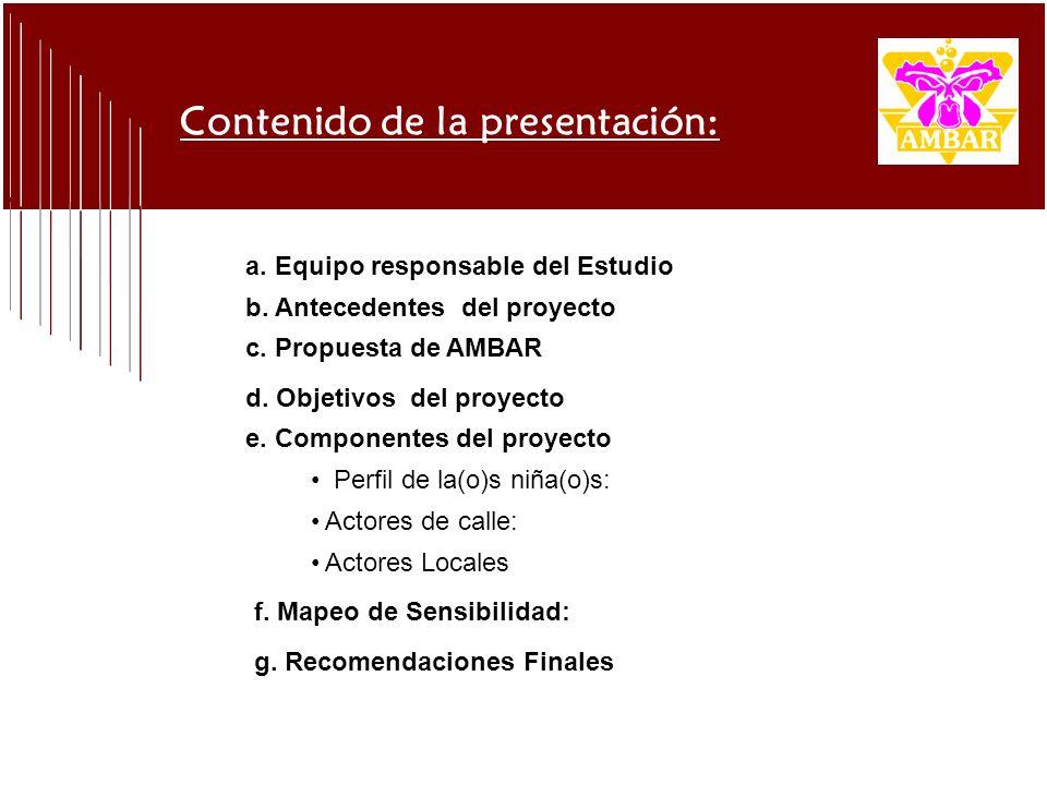 Contenido de la presentación: a. Equipo responsable del Estudio b. Antecedentes del proyecto c. Propuesta de AMBAR d. Objetivos del proyecto e. Compon