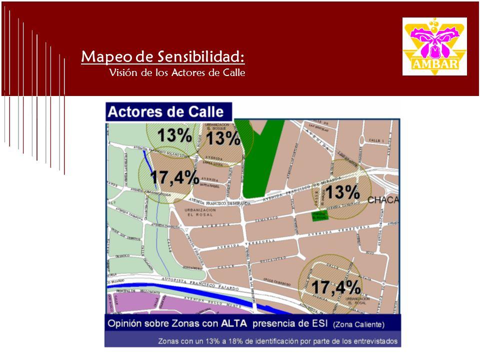 Mapeo de Sensibilidad: Visión de los Actores de Calle