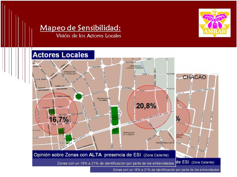 Mapeo de Sensibilidad: Visión de los Actores Locales