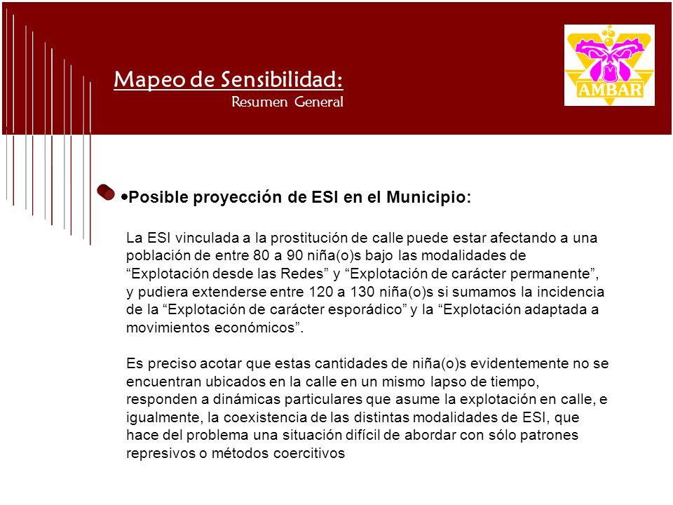 Mapeo de Sensibilidad: Resumen General La ESI vinculada a la prostitución de calle puede estar afectando a una población de entre 80 a 90 niña(o)s baj