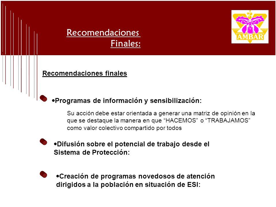 Recomendaciones Finales: Programas de información y sensibilización: Su acción debe estar orientada a generar una matriz de opinión en la que se desta