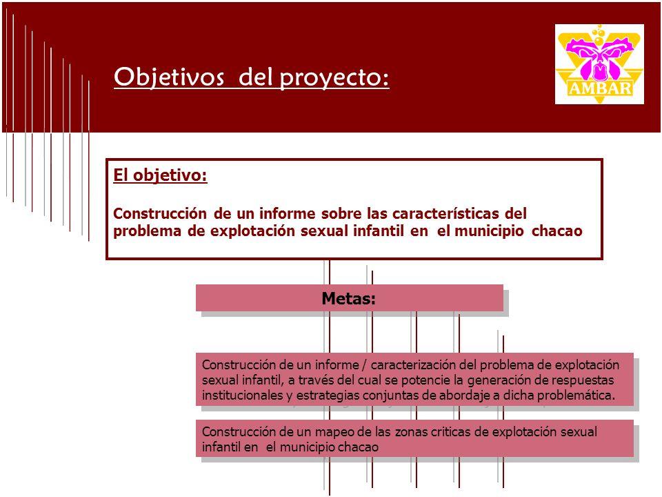El objetivo: Construcción de un informe sobre las características del problema de explotación sexual infantil en el municipio chacao Objetivos del pro