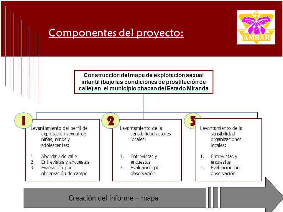 Resumen General Recomendaciones finales Implementar estrategias de intervención articuladas con los distintos sectores del Municipio: Desarrollo de programas de acercamiento que permitan el contacto con esta(o)s niñas(o)s: