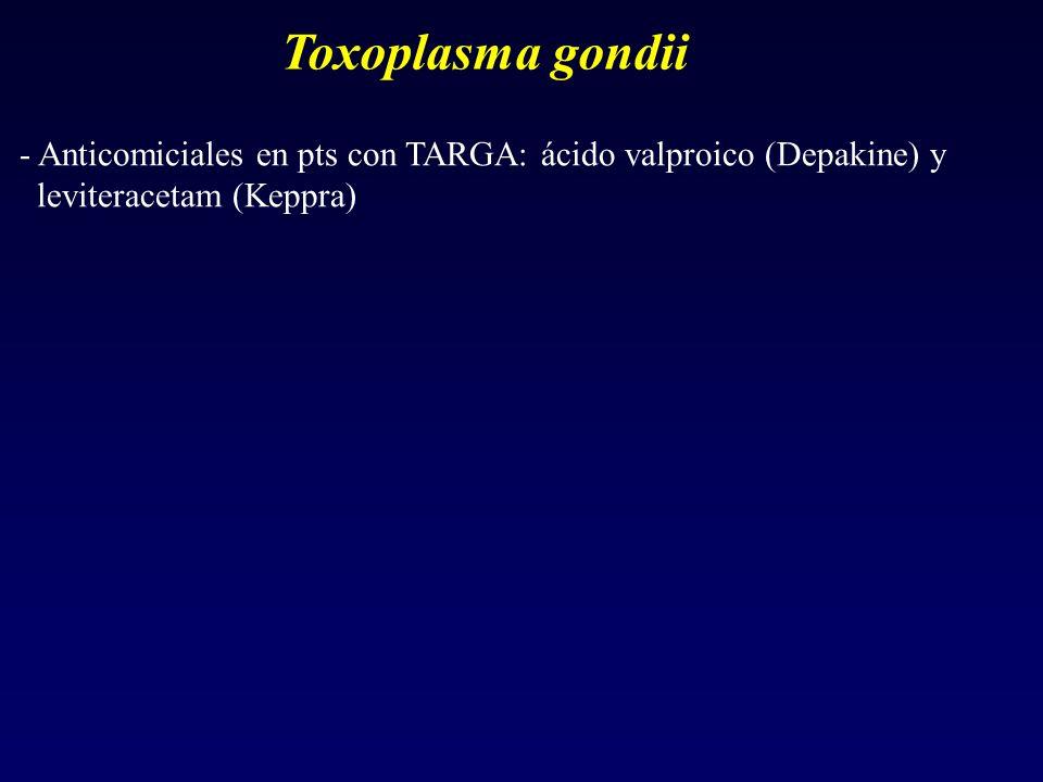 Toxoplasma gondii - Anticomiciales en pts con TARGA: ácido valproico (Depakine) y leviteracetam (Keppra)