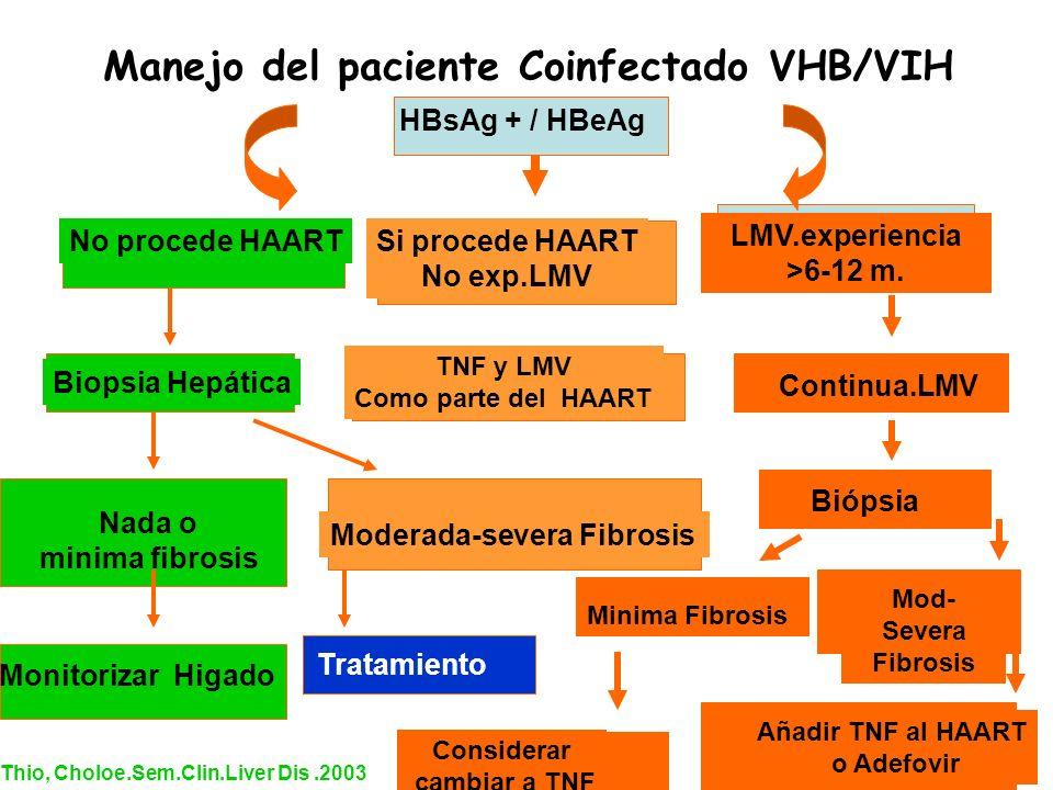 HBsAg + / HBeAg No procede HAARTSi procede HAART No exp.LMV LMV.experiencia >6-12 m. Biopsia Hepática Nada o minima fibrosis Moderada-severa Fibrosis