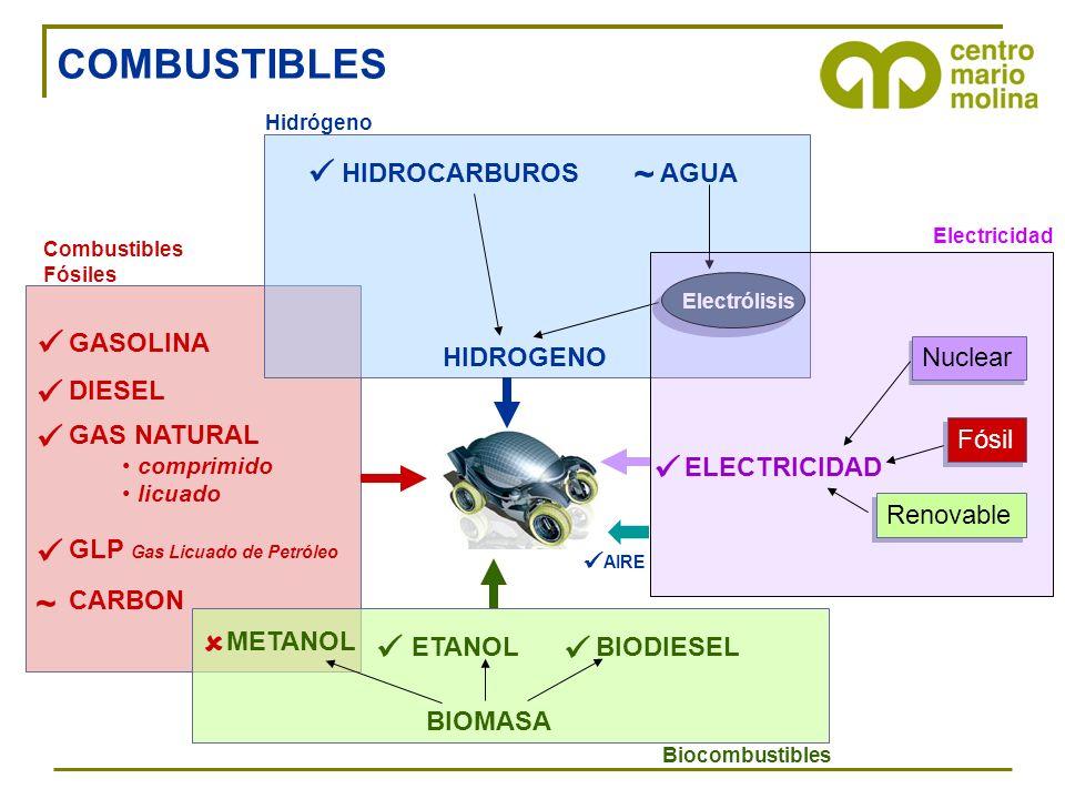 GASOLINA DIESEL GAS NATURAL comprimido licuado GLP Gas Licuado de Petróleo Combustibles Fósiles CARBON ~ ETANOLBIODIESEL Biocombustibles BIOMASA METAN