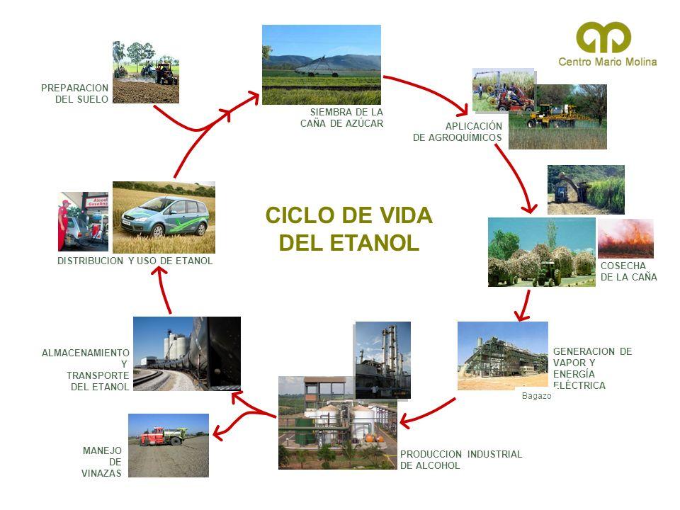 PREPARACION DEL SUELO SIEMBRA DE LA CAÑA DE AZÚCAR COSECHA DE LA CAÑA APLICACIÓN DE AGROQUÍMICOS GENERACION DE VAPOR Y ENERGÍA ELÉCTRICA PRODUCCION IN