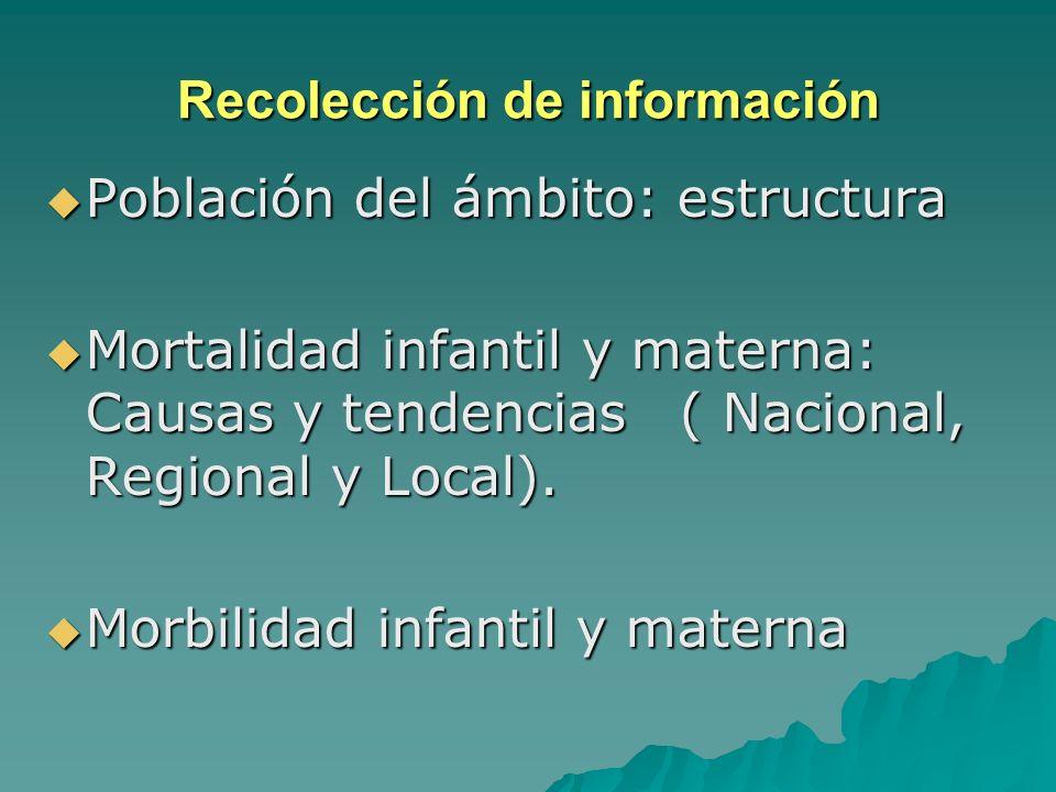 PRIMER MOMENTO ANALISIS DE LA REALIDAD LOCAL Recolección de información Recolección de información Problema de salud infantil y materna Problema de sa