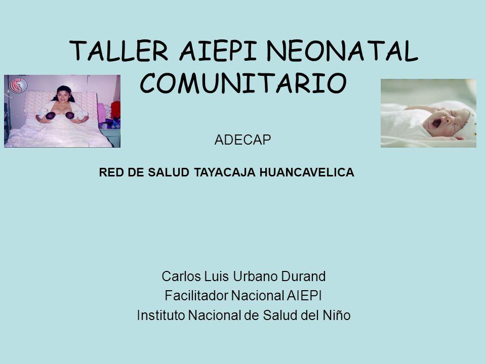 TALLER AIEPI NEONATAL COMUNITARIO ADECAP Carlos Luis Urbano Durand Facilitador Nacional AIEPI Instituto Nacional de Salud del Niño RED DE SALUD TAYACA