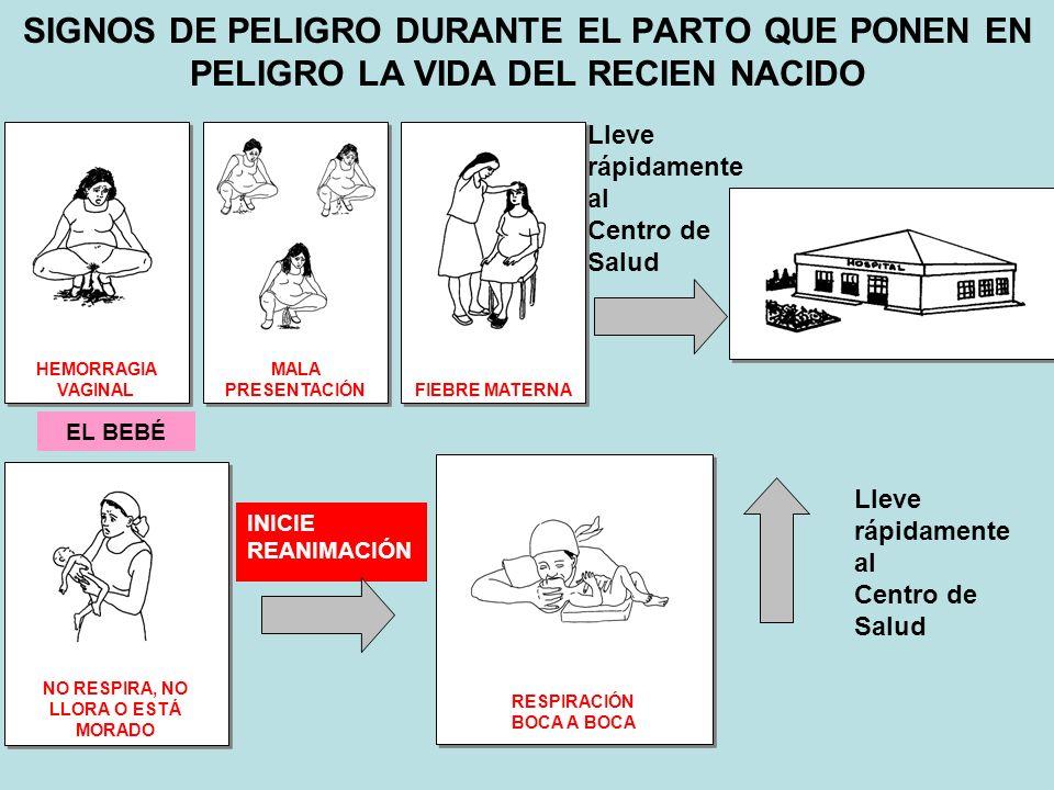 SIGNOS DE PELIGRO DURANTE EL PARTO QUE PONEN EN PELIGRO LA VIDA DEL RECIEN NACIDO Lleve rápidamente al Centro de Salud HEMORRAGIA VAGINAL MALA PRESENT