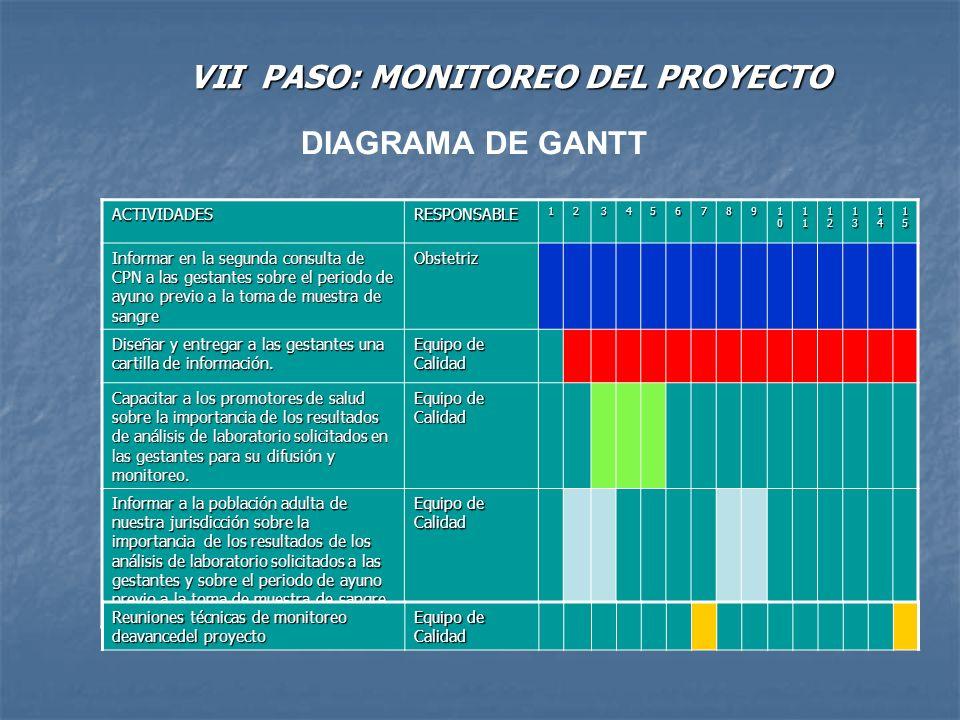 VII PASO: MONITOREO DEL PROYECTO DIAGRAMA DE GANTT ACTIVIDADESRESPONSABLE123456789 10101010 11111111 12121212 13131313 14141414 15151515 Informar en l