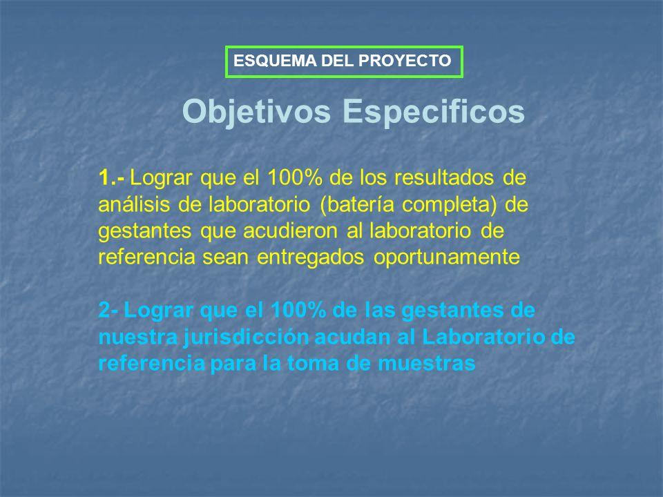 Objetivos Especificos 1.- Lograr que el 100% de los resultados de análisis de laboratorio (batería completa) de gestantes que acudieron al laboratorio