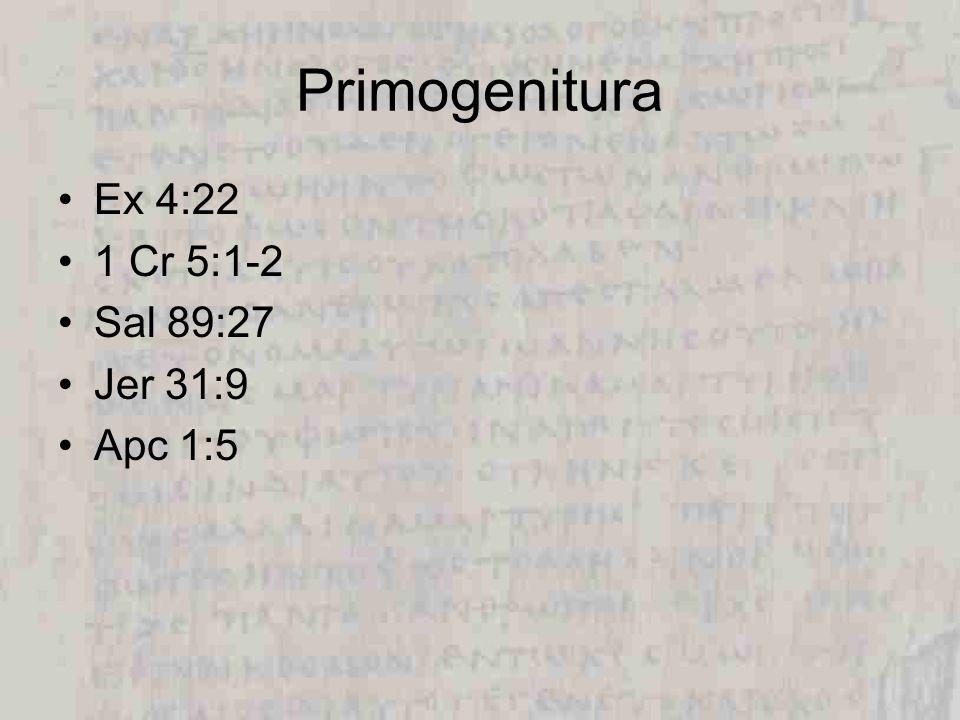 Salmo 45 Del Mesías me,tocoj - compañeros (12:8) participantes 1 P 4:13 Salmo 102:25-27 Habla de hw hoy> YHWH (v22) – Jehovah Habla de lae EL (v 24) – Dios ¿Por qué se refiere a Jesús.