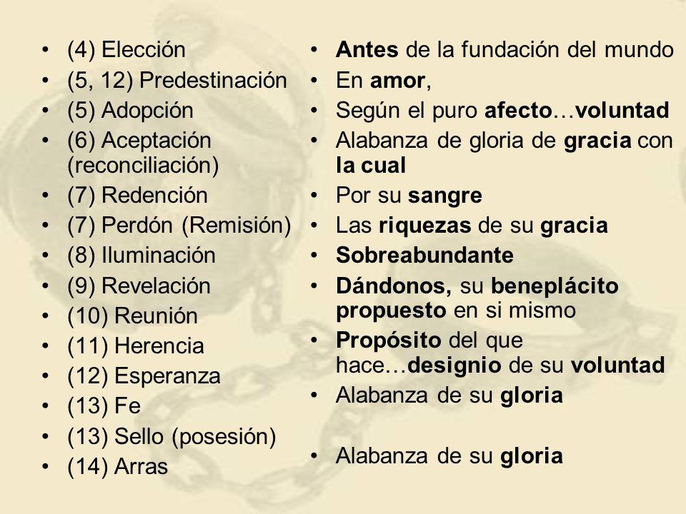(4) Elección (5, 12) Predestinación (5) Adopción (6) Aceptación (reconciliación) (7) Redención (7) Perdón (Remisión) (8) Iluminación (9) Revelación (10) Reunión (11) Herencia (12) Esperanza (13) Fe (13) Sello (posesión) (14) Arras Antes de la fundación del mundo En amor, Según el puro afecto…voluntad Alabanza de gloria de gracia con la cual Por su sangre Las riquezas de su gracia Sobreabundante Dándonos, su beneplácito propuesto en si mismo Propósito del que hace…designio de su voluntad Alabanza de su gloria