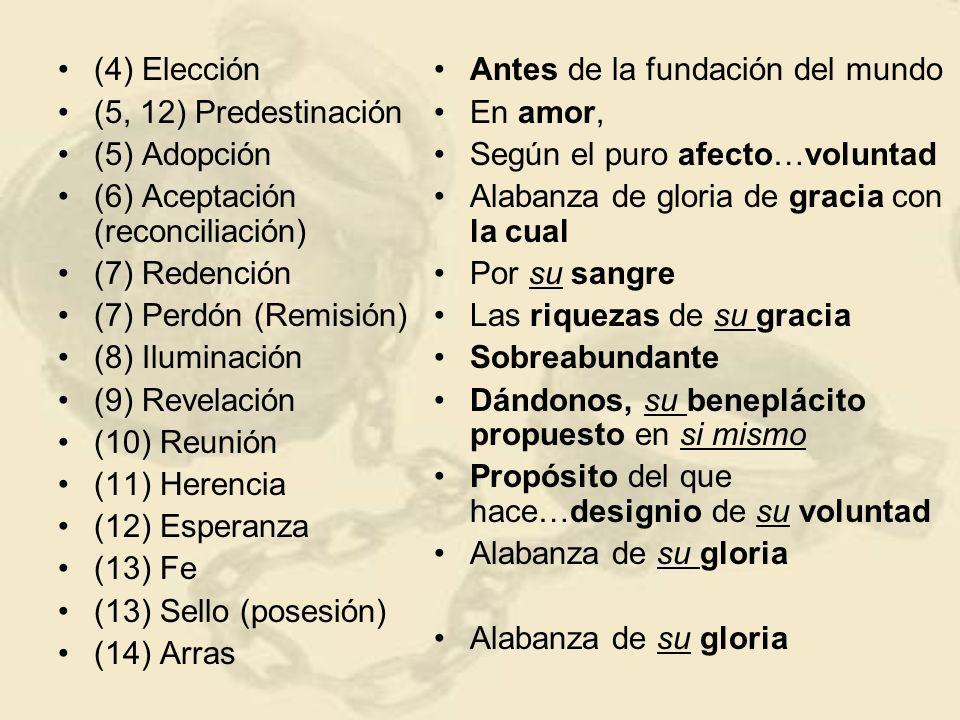 (4) Elección (5, 12) Predestinación (5) Adopción (6) Aceptación (reconciliación) (7) Redención (7) Perdón (Remisión) (8) Iluminación (9) Revelación (10) Reunión (11) Herencia (12) Esperanza (13) Fe (13) Sello (posesión) (14) Arras Antes de la fundación del mundo En amor, Según el puro afecto…voluntad Alabanza de gloria de gracia con la cual Por su sangre Las riquezas de su gracia Sobreabundante Dándonos, su beneplácito propuesto en si mismo Propósito del que hace…designio de su voluntad Alabanza de su gloria Dios es soberano en la salvación